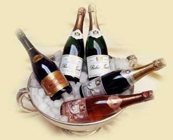 champagner-kelch4